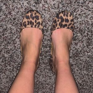 Cheetah flats